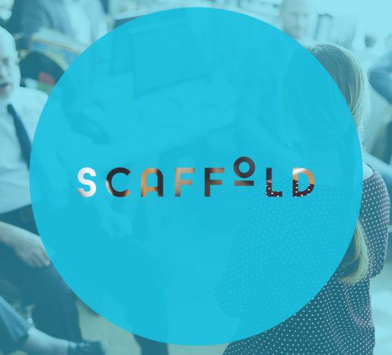 Scaffold Identity